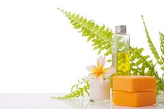 Soap. Decorated with leelawadee flower and fern leaf on white, with copy space and paths Stock Image