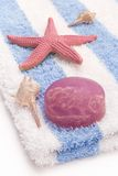 Soap with algae. Home spa with algae soap on a towel and seashells stock image
