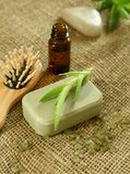 Soap, aloe vera and a bottle with oil aloe Royalty Free Stock Images