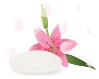 Soap with aroma of lilies Stock Photos