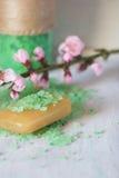 Soap and aromatic bath salt Stock Photos