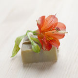 Soap bar with natural ingredients Stock Photography