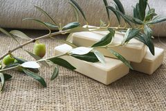 Soap bars with olive oil Stock Image