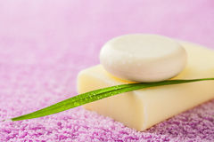 Soap for bathroom Stock Photography