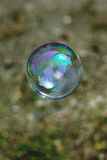 Soap bubble. On grass background Royalty Free Stock Image
