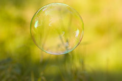 Soap bubble. On a sunny autumn day Royalty Free Stock Image
