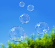 Soap bubble on blue sky. Background Royalty Free Stock Photo