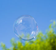 Soap bubble on blue sky Royalty Free Stock Photography