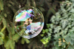 Soap bubble. Colorful soap bubble with reflection of trees and a house in it Royalty Free Stock Photography