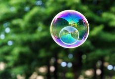 Soap bubble Stock Image
