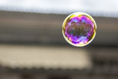 Soap bubble. A soap bubble floating in the air Royalty Free Stock Photography