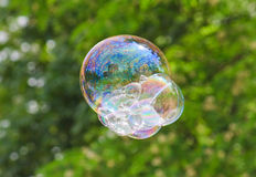 Soap bubble on a floral background Royalty Free Stock Images