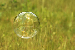 Soap bubble flying in the air Stock Images
