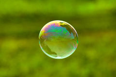 Soap bubble on green background Stock Images