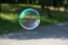 Soap bubble in the park 2 Royalty Free Stock Images