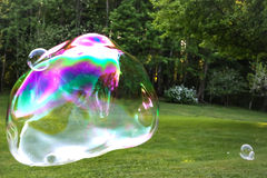 Soap bubble with the reflection on green background. Stock Photography