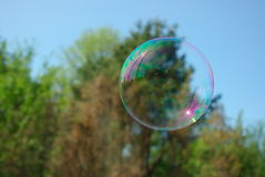 Soap Bubble with Reflections. Big round soap bubble hovering in the air. Blue sky and blurry forest in the background Royalty Free Stock Photography