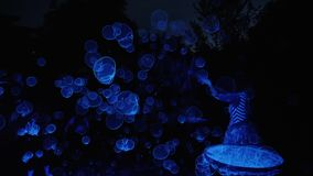 Soap bubble show highlighted in blue