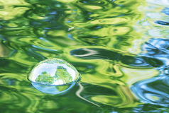 Soap bubble on water. Soap bubble that reflects some trees, on green water Stock Images