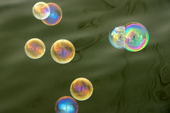 Soap bubbles. With person and trees reflected in them stock photography
