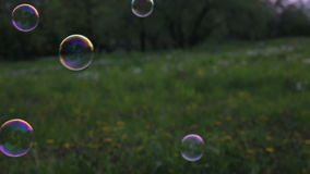 Soap bubbles against the background of the clearing stock footage