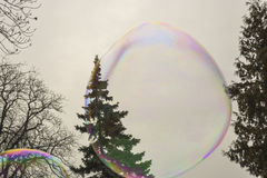 Soap bubbles. Beautiful and colorful soap bubbles in the park to entertain children royalty free stock image