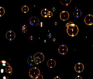 Soap bubbles on black Royalty Free Stock Photography