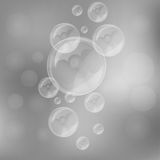 Soap bubbles. On blurry gray background royalty free illustration