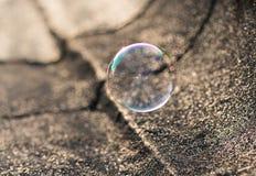 Soap bubble next to ground Stock Photos
