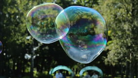 Soap bubbles are flying off the trees in the forest in summer. On holiday stock footage