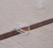 Soap bubbles. Flying over a sidewalk Stock Image