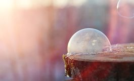 Soap bubbles freeze in the cold. Winter soapy water freezes in t. Soap bubbles freeze in the cold. Winter soapy water freezes in air.r Stock Photo