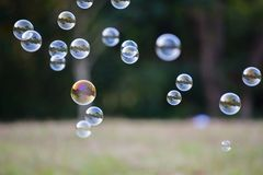 Soap Bubbles. In front of the forest Royalty Free Stock Photo