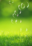 Soap bubbles on green background Royalty Free Stock Photography
