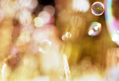 Soap bubbles on a green background Stock Photography