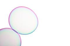 Soap bubbles. Group of soap bubbles on a white background Royalty Free Stock Photo