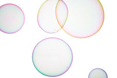 Soap bubbles. Group of soap bubbles on a white background Stock Photography