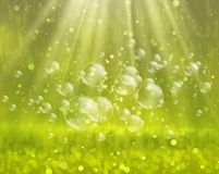 Soap bubbles on a nature background Royalty Free Stock Images