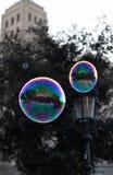 Soap bubbles in open air stock photo