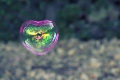 Soap bubbles Stock Photo