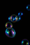 Soap Bubbles with Rainbow Reflection Stock Image