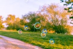 Soap bubbles on a road and meadow at sunset stock photography
