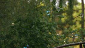Soap Bubbles Soaring In The Air stock video