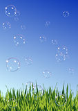 Soap_bubbles_on_summer_field Lizenzfreie Stockbilder