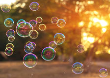 Soap bubbles into the sunset with beautiful bokeh.close-up Stock Photography