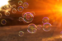 Soap bubbles into the sunset , blurred background .close-up Stock Image
