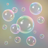 Soap bubbles on transparent background Stock Image