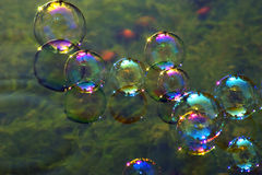 Soap bubbles on water royalty free stock photo