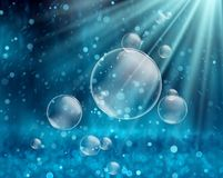 Soap bubbles on a water nature background Stock Image