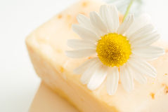Soap with chamomile stock image